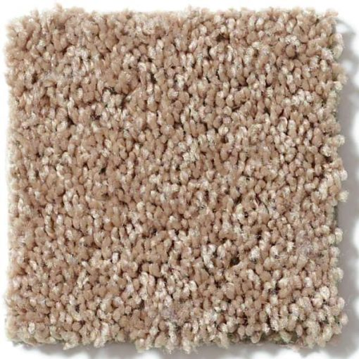 Shaw Golden Echo 00202 Carpet