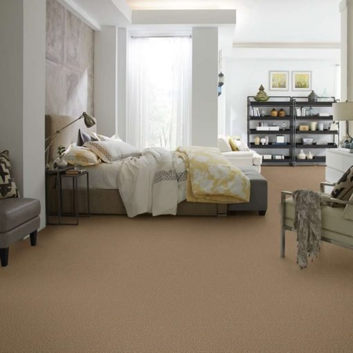 shaw carpet golden echo fastball 00202