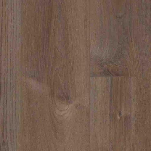 COREtec Pro Plus Enhanced Planks Elster Oak
