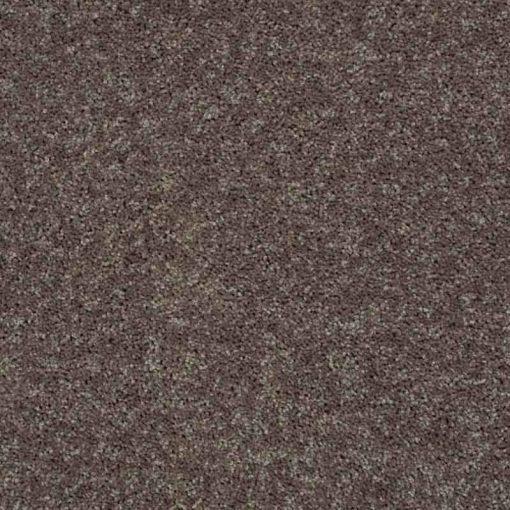 Driftwood Carpet Up Close