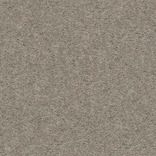 PERFECT TAUPE Presidio Solid