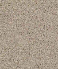 SHIFTING SAND Presidio Solid