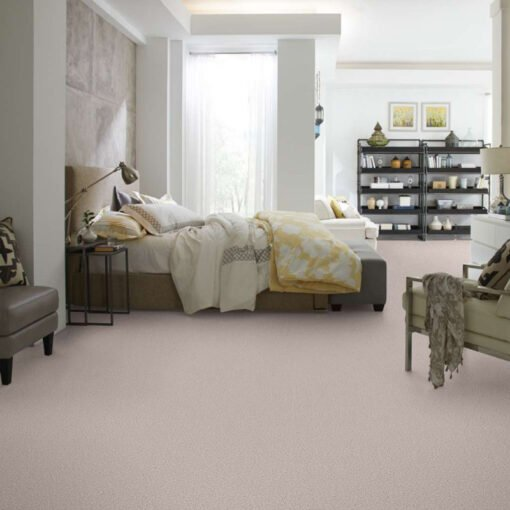Angel Cloud 00102 Carpet Full Room - Shaw Metro Court 12'