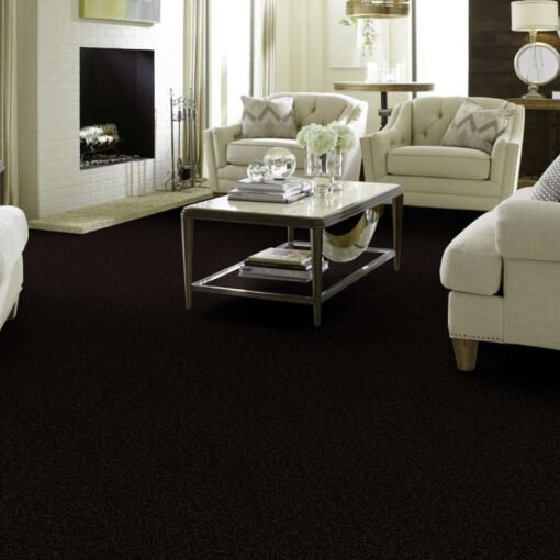 Armour 00502 Carpet Full Room - Shaw Metro Court 12'