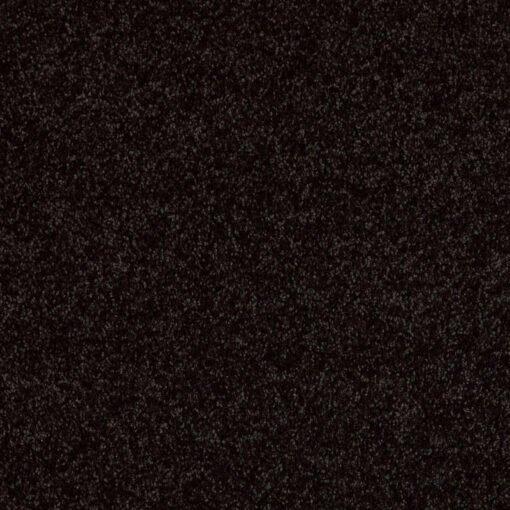 Armour 00502 Carpet - Shaw Metro Court 12'