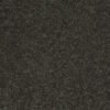 Aspen 00302 Well Played Carpet