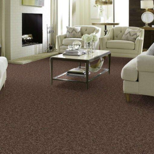 Cattail 00702 Carpet Full Room - Shaw Metro Court 12'
