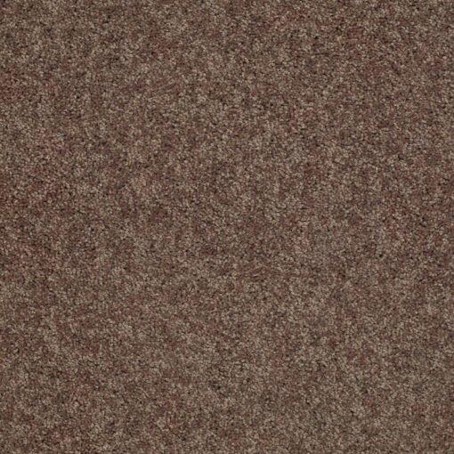 Cattail 00702 Carpet - Shaw Metro Court 12'