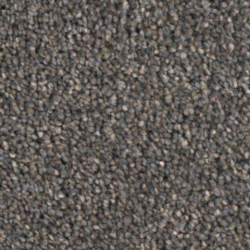 Challenger 09 Carpet - Phenix Grand Champion
