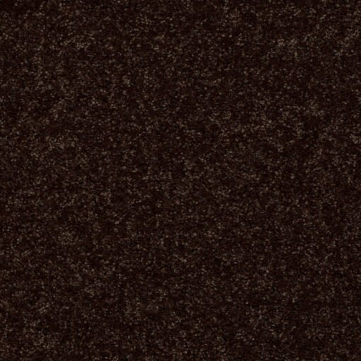 Coffee Bean 00705 Carpet - Shaw Metro Court 12'