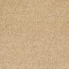 Crumpet 00203 Carpet - Shaw Metro Court 12'