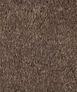 Desert Mud New Beginning - Mohawk Air.o Carpet