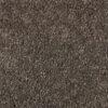 Double Dutch New Beginning - Mohawk Air.o Carpet