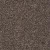 Driftwood 00703 Carpet - Shaw Metro Court 12'