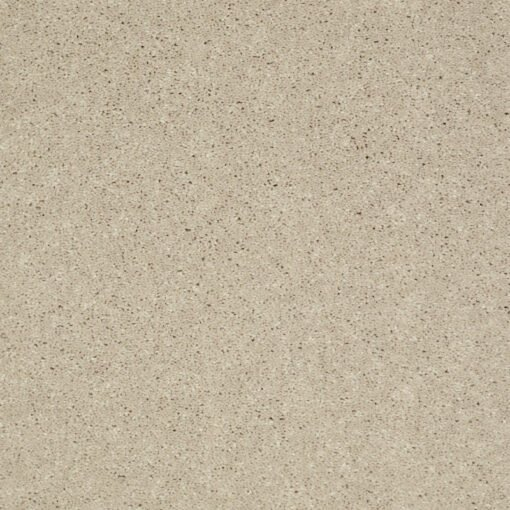 Ecru 00103 Well Played Carpet