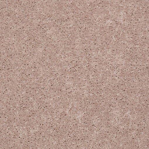 Flax Seed 00103 Carpet - Shaw Metro Court 12'