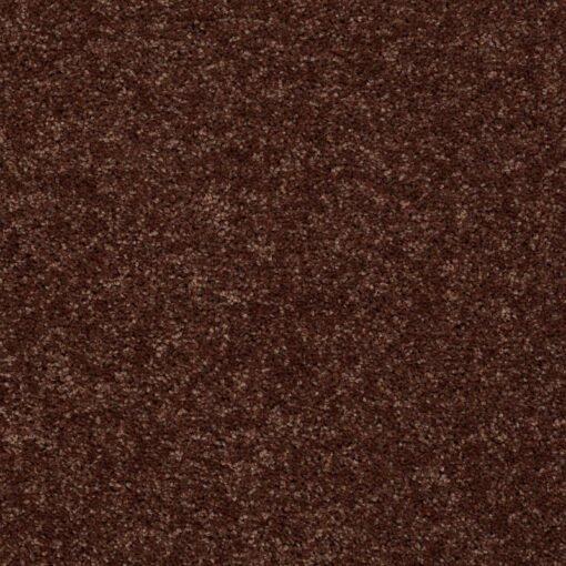 Flower Pot 00610 Carpet - Shaw Metro Court 12'
