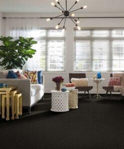 Garden Grove 00301 Carpet Full Room - Shaw Metro Court 12'