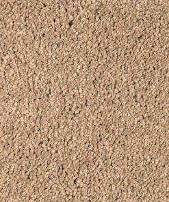 Gazebo New Beginning - Mohawk Air.o Carpet