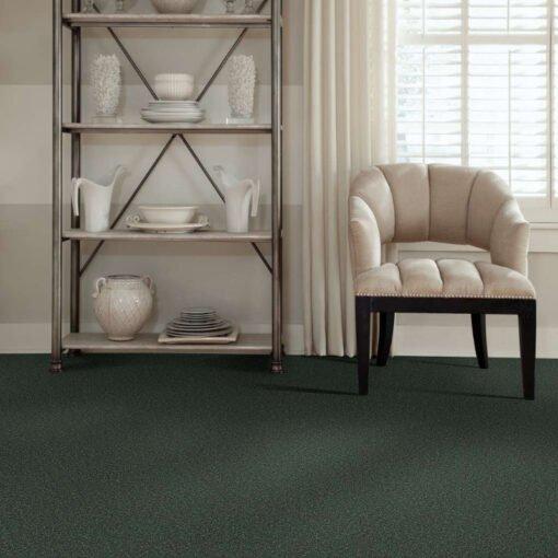 Going Green 00340 Carpet Full Room - Shaw Metro Court 12'