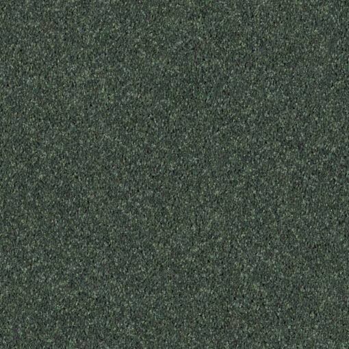 Going Green 00340 Carpet - Shaw Metro Court 12'