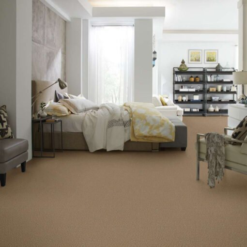 Golden Echoes 00202 Carpet Full Room - Shaw Metro Court 12'