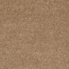 Golden Echoes 00202 Carpet - Shaw Metro Court 12'