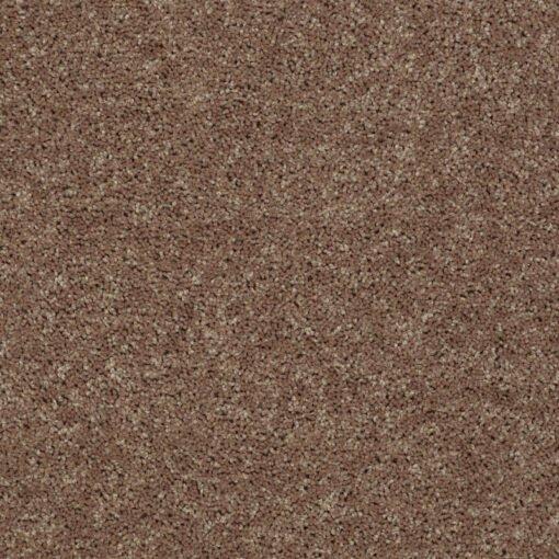 Granola 00701 Carpet - Shaw Metro Court 12'
