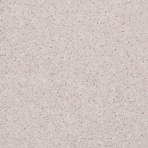 Halo 00100 Carpet - Shaw Metro Court 12'