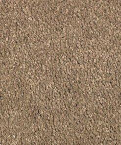 High Style New Beginning - Mohawk Air.o Carpet