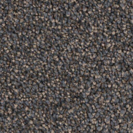 Masterstroke 10 Carpet - Phenix Grand Champion