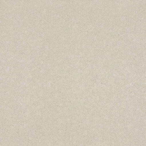 Minimalist 00100 Carpet
