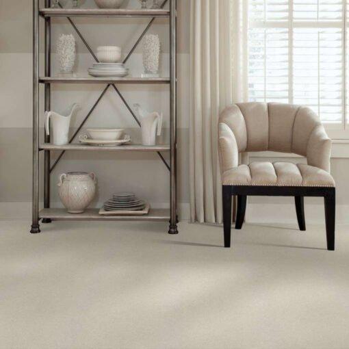 Minimalist 00100 Carpet Full Room