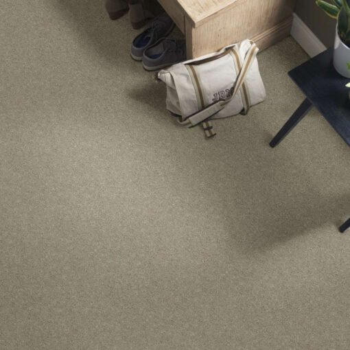 Natural Beige 00700 Well Played Carpet Full Room