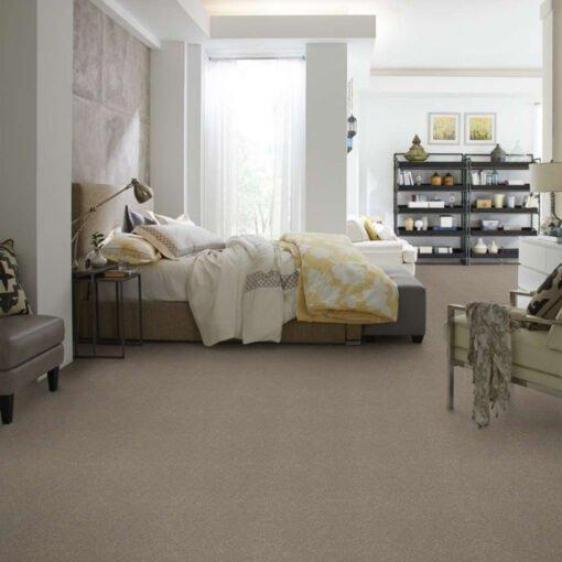 Natural Contour 00104 Carpet Full Room
