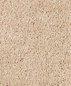 Oakridge New Beginning - Mohawk Air.o Carpet