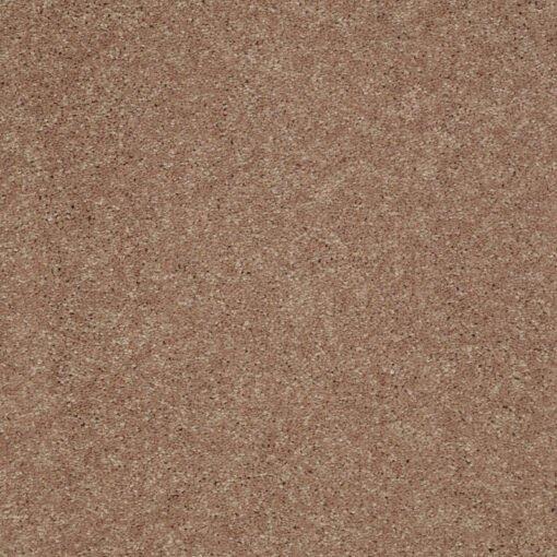 Pebble Creek 00701 Well Played Carpet