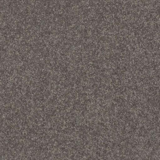 Pewter 00701 Carpet