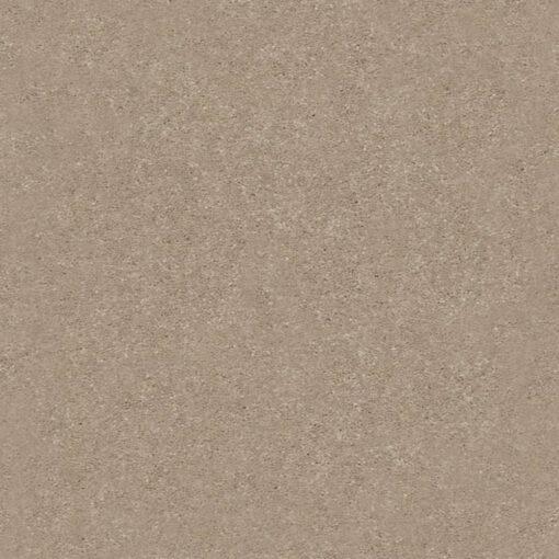 Raw Lumber 00102 Carpet