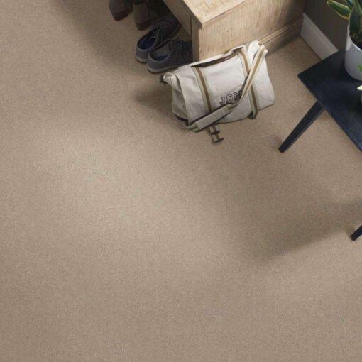 Raw Lumber 00102 Carpet Full Room