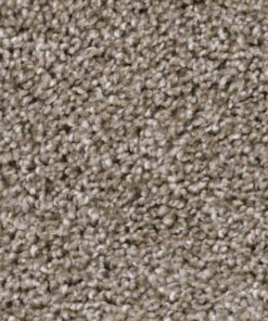 Refined 711 Central Carpet