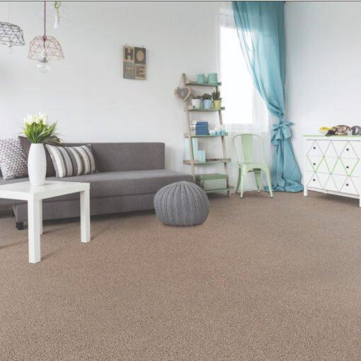 Refined 922 Appealing Carpet Full Room