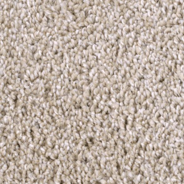 Refined Capital 113 Carpet