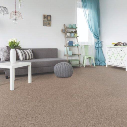 Refined Central 711 Carpet Full Room