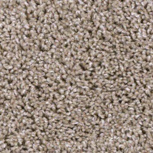 Refined Elite 112 Carpet