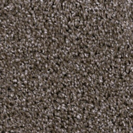 Refined Foremost 811 Carpet