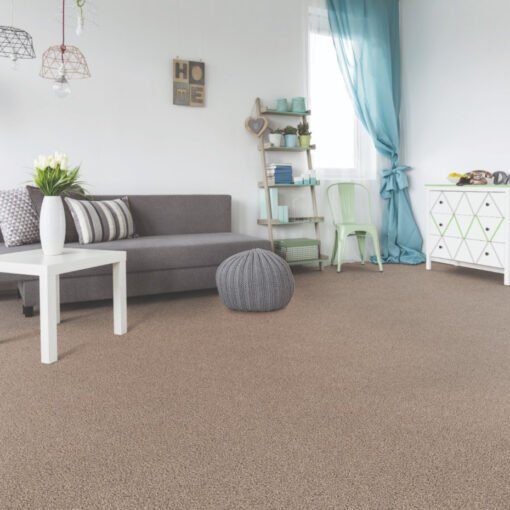 Refined Foremost 811 Carpet Full Room