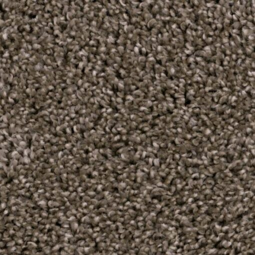 Refined Foundation 822 Carpet