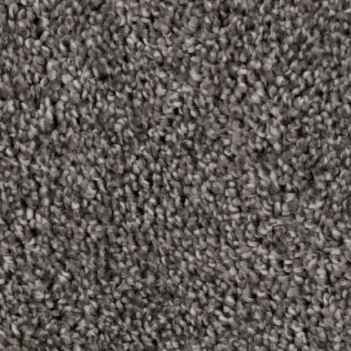 Refined Meager 955 Carpet