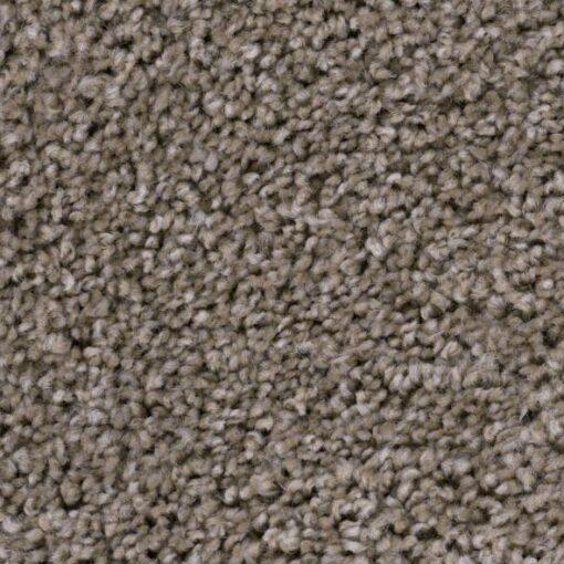 Refined Suave 722 Carpet